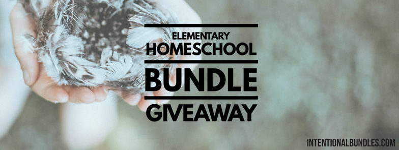 It is so exciting to be starting our homeschool year, especially if we are saving a lot of money. Here, we share with you a chance to enter a giveaway for a chance to win $270 worth of educational printables for free! Come and check it out!