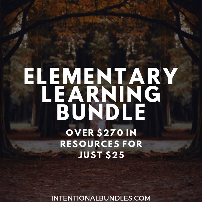 Intentional Bundles